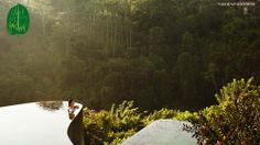 Ubud Hanging Gardens in Bali... this place definitely just made my list of places to see before I die!