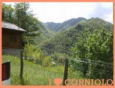 I love #Corniolo! Il mio Bosco!