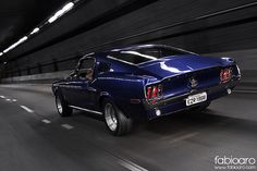 1968 Mustang Fastback.  Can you hear that rumble?