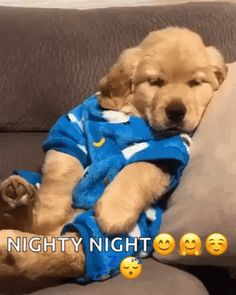With Tenor, maker of GIF Keyboard, add popular Good Night animated GIFs to your conversations. Share the best GIFs now >>> Good Night Love Images, Cute Good Night, Good Night Messages, Good Night Wishes, Good Night Sweet Dreams, Good Night Image, Good Morning Good Night, Good Night Sleep, Cuddling Gif