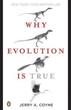 Why Evolution Is True by Jerry A. Coyne http://smile.amazon.com/dp/B001QEQRJW/ref=cm_sw_r_pi_dp_cGU0wb1PJB49V