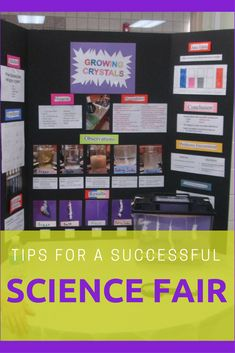 Learn some great tips for organizing a successful science fair. Instructions provide for how to color code your science fair to make registration and judging go smoothly. Science Fair Topics, Elementary Science Fair Projects, Science Fair Experiments, Science Lessons, Science Education, Science For Kids, School Projects, Science Project Board, Science Fair Board