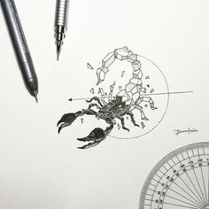 Geometric Beasts | Scorpion by kerbyrosanes