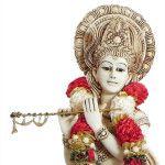 Sri Krishna Slokas And Meaning