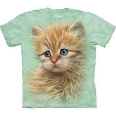Kitten Portrait $23.92