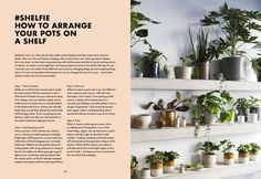 #Shelfie How To Arrange Your Pots from How Not To Kill Your Plants by Nik Southern