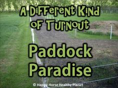 HappyHorseHealthyPlanet_Paddock Paradise Cover