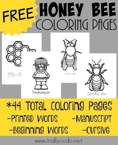Spring is just around the corner and now is the perfect time to learn all about Honey Bees Grab these FREE Coloring Pages 44 pages Bee Coloring Pages, Free Coloring Sheets, Mandala Coloring, Colouring, Adult Coloring, Coloring Books, Bee Activities, Preschool Themes, Color Activities