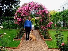 Inspirational Verleihen Sie Ihrem Garten mehr Magie durch Rosenbogen mit sch nen Kletterrosen Alles N tige daf r Pflege Rosenbogen Konstruktion usw finden Sie hier