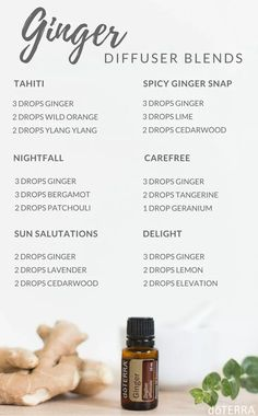 Diffuser recipes for Doterra ginger essential oil. Uses for ginger essential oil. Find out how to get your own essential oils here Helichrysum Essential Oil, Ginger Essential Oil, Doterra Essential Oils, Doterra Blends, Cedarwood Essential Oil Uses, Healing Oils, Aromatherapy Oils, Healing Power, Spicy Ginger