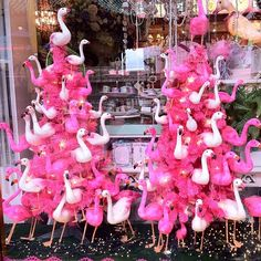 >>>Cheap Sale OFF! >>>Visit>> Lynn Chan I saw pink flamingos at Lowes today and thought of you :) Tropical Christmas, Coastal Christmas, Christmas In July, Pink Christmas, All Things Christmas, Pink Flamingo Party, Flamingo Decor, Pink Flamingos, Flamingo Gifts