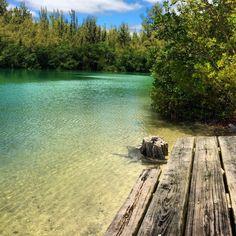 50 Best Kayak Oleta River State Park Images National