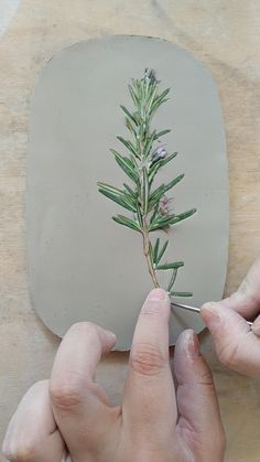 Pottery Painting Designs, Pottery Art, Pottery Lessons, Cerámica Ideas, Cement Art, Pottery Videos, Deco Nature, Ceramic Texture, Clay Art Projects