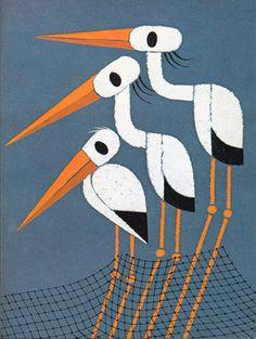 Animalarium: Attilio & Tolstoy