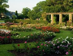 Boerner Botanical Gardens ~ We love to go here and walk through the gardens and the woods. It is simply beautiful.