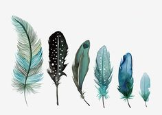 Drawn feather colourful feather - pin to your gallery. Explore what was found for the drawn feather colourful feather Watercolor Feather, Feather Painting, Feather Art, Feather Tattoos, Watercolor Paintings, Watercolour, Arrow Feather, Doodle Drawing, Painting & Drawing