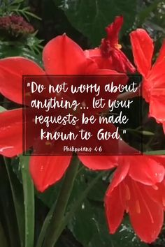 Peace Of God, Word Of God, Great Bible Verses, Spiritual Religion, Prayer For Anxiety, Be Not Dismayed, All Things Work Together, Overcome The World, Seek The Lord