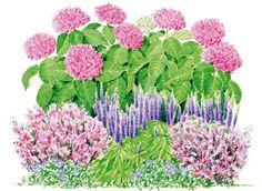 Comment bien associer l'hortensia YOU&ME® 'Together' - Diy Garten Bird Bath Garden, Garden Art, Garden Plants, Gardening Vegetables, Perennial Garden Plans, Flower Garden Plans, Beautiful Gardens, Beautiful Flowers, Garden Online