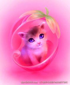 Shuichi Mizoguchi - kitten.