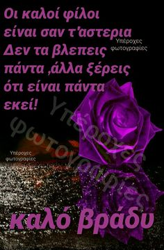 Good Morning Sister, Cute Good Morning, Good Night, Beautiful Pink Roses, Wish, Quotes, Nighty Night, Quotations, Good Night Wishes