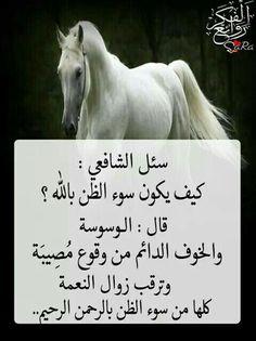 Islam Beliefs, Islam Hadith, Islam Religion, Islam Quran, Arabic English Quotes, Arabic Love Quotes, Islamic Inspirational Quotes, Arabic Words, Wisdom Quotes