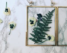 When I was younger I remember pressing flowers by sticking them inside a heavy book, then putting them in the airing cupboard for 3-4 weeks. I've only recently found out you can actually press flowers really quickly using an iron! I brought one of those cute brass and glass hanging frames in the Jan