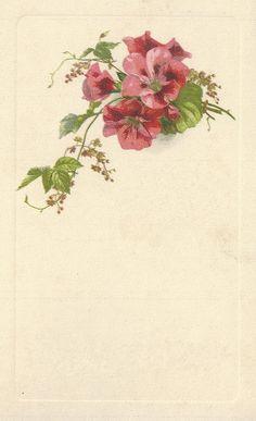Little Birdie Blessings: blank pink floral frame