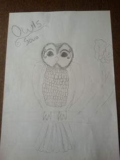 Sowa/Owl