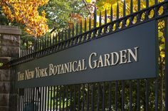 new york botanical garden - Google Search