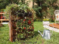 Cómo hacer un jardín vertical en un palet.  #jardinería #reciclaje #palet