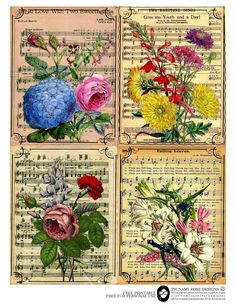 Tsunami Rose Designs: Free Printable- Altered Music Sheets