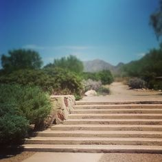 Steps and mountains at #TaliesinWest #FrankLloydWright #WrightSites #Architecture #Design #Nature #OrganicArchitecture #Masonry #Phoenix #Scottsdale #Desert