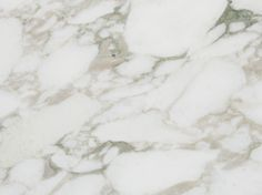 Calacatta Vagli - Vancouver Marble | Marble Slabs Gallery - Lucian Stone