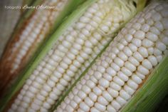 Día 63 / Mercado de Verduras. photography challenge