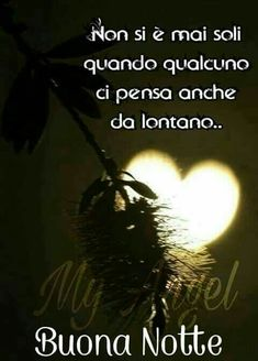 Good Morning Good Night, Good Morning Images, Italian Phrases, Magic Words, Mario, Dolce, Good Night Msg, Phrases In Italian, Cat Stuff