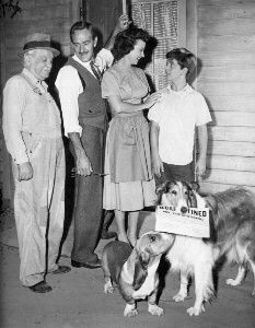 Lassie 1950s. Almost all the original cast of Lassie, except for Porky [Donald Keeler]: left to right, Gramps [George Cleveland], Doc Weaver [Arthur Space], Ellen Miller [Jan Clayton], and Jeff [Tommy Rettig], with Lassie and Pokey.