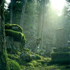 Okunoin Graveyard by realbelgianwaffles on Flickr.