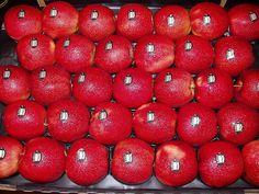 manzana Red Chief de Almería