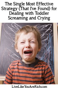 Interesting read!!! I like the idea of a crying chair.....  How to Deal with Toddler Screaming and Crying