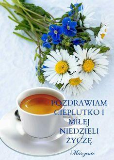 Good Morning, Sunday, Tableware, Plants, Humor, Frases, Buen Dia, Domingo, Dinnerware