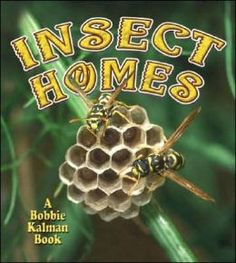 Book: Science, NonFiction; Explains Insect Homes