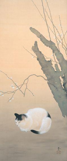 japaneseaesthetics:  Hishida Shunso (Hishida Miyoji), 1874-1911Cat and Plum Blossoms, 1906Adachi Museum of Art, Yasugi (Japan)