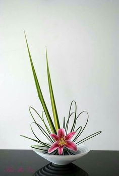 Asymmetrical, Ikebana, lily with looped leaves and a couple spiked leavesRisultati immagini per ikebana arte floral japonesBildergebnis für images of ikebana flower arrangementI arranged Pandanus and steel grass to create the line and shape like a b Contemporary Flower Arrangements, Beautiful Flower Arrangements, Love Flowers, Beautiful Flowers, Yellow Flowers, Creative Flower Arrangements, Dry Flowers, Exotic Flowers, Floral Flowers