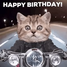 Discover & share this Happy Birthday GIF with everyone you know. GIPHY is how you search, share, discover, and create GIFs. Happy Birthday Wishes Sister, Birthday Wishes Gif, Happy Birthday Sister, Happy Birthday Funny, Happy Birthday Messages, Happy Birthday Greetings, Funny Birthday Cards, Birthday Humorous, Birthday Sayings