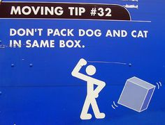 on packing pets: don't pack dog and cat in same box by moving funny images