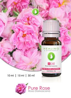 Rose Otto  Natural Rose oil  Pure Rose essential by FairOrganic
