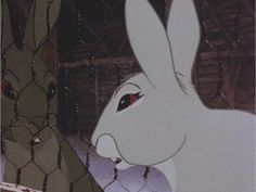 Watership Down - Clover