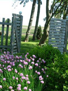 repurposed pallet gates