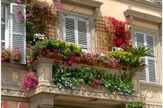 Svegliarsi la mattina e aprire la porta di questo balcone, che meraviglioso risveglio!
