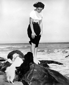Elizabeth Taylor takes her dogs to the beach